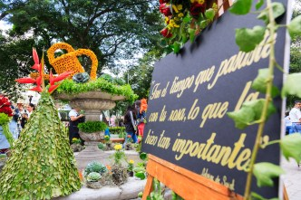 Flower Decorations at Parque Central BY RUDY GIRON