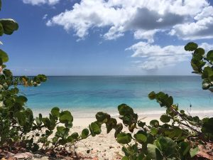 Our day trips, yacht charter