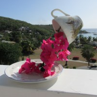 My secret Happy place and a Floating Teacup Centrepiece