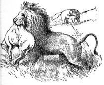 Αίσωπος – Το λιοντάρι, η αλεπού και η ελαφίνα