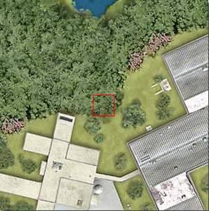 10^2 =100 μέτρα: Σ' αυτή την απόσταση βλέπουμε τα όρια του δάσους και κτίρια