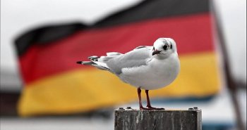 277951-germany