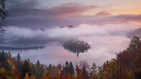 The Harmony of Fall