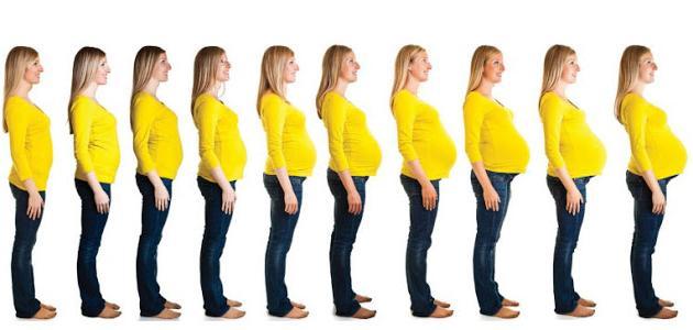 ظهور بطن الحامل أنت لها
