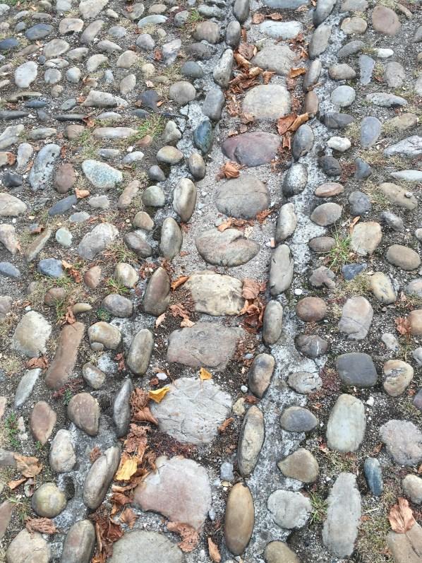 cobbles-in-street
