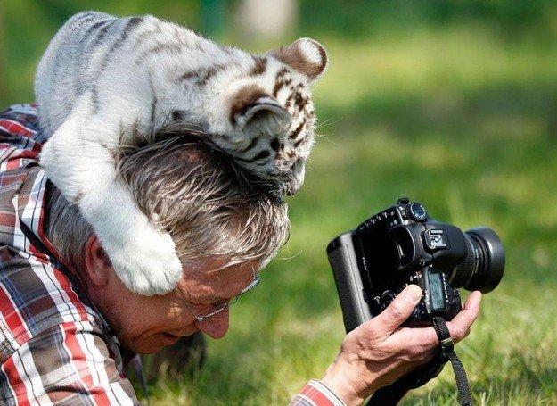 Nature-photographers31__880-625x455