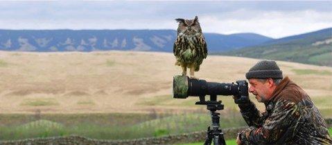 20 фотографий, которые доказывают, что фотограф дикой природы — лучшая в мире профессиия