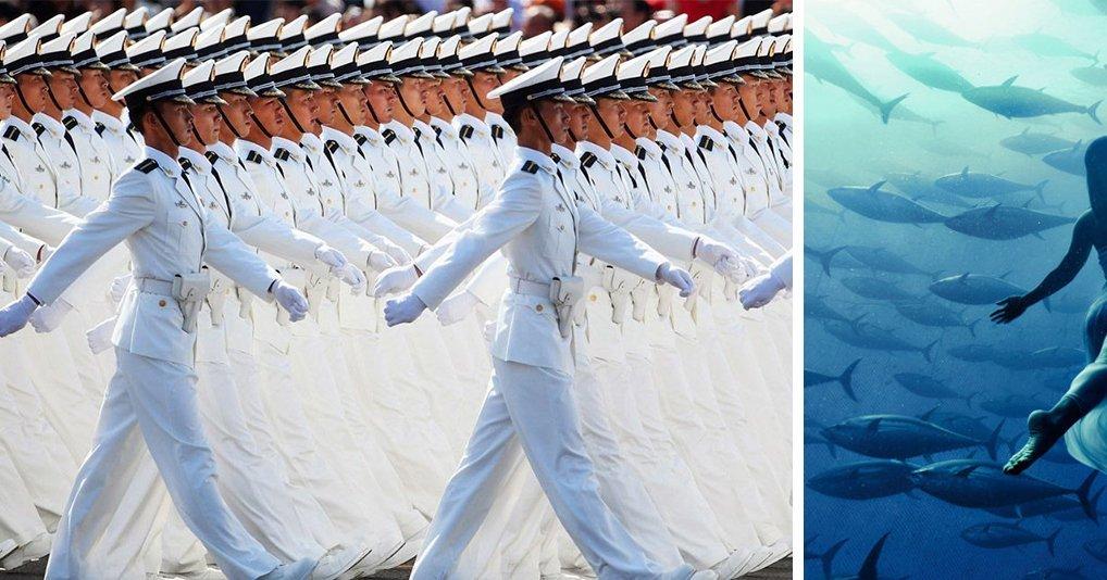 30 снимков, которые поражают наше воображение