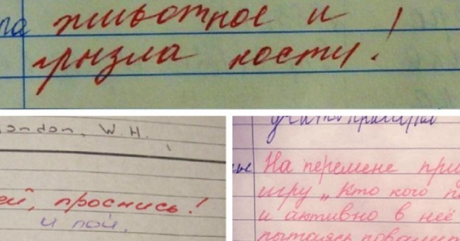 Записи из школьных дневников: то, от чего родители теряют нервные клетки