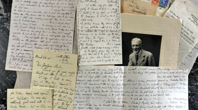 The collection of Beatrix Potter letters in the auction