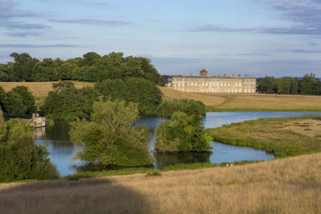Petworth Park in West Sussex