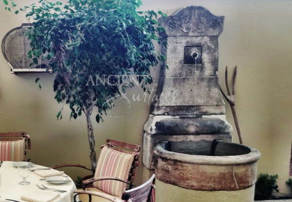 Antique Pool Stone Fountain And Enchanted