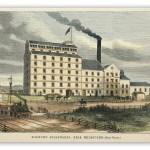 Sugar - Sugar cane, mills, etc