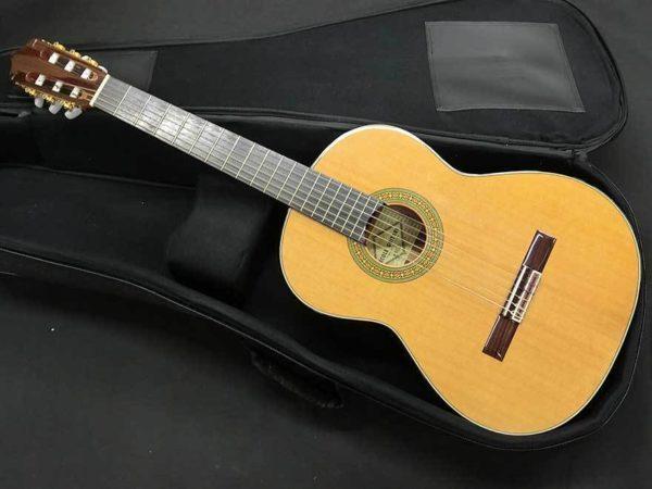 エコールギター