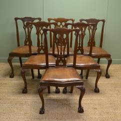 Antique Oak Dining Chairs Room Chair Covers At Walmart Set Of Six Chippendale Design Edwardian