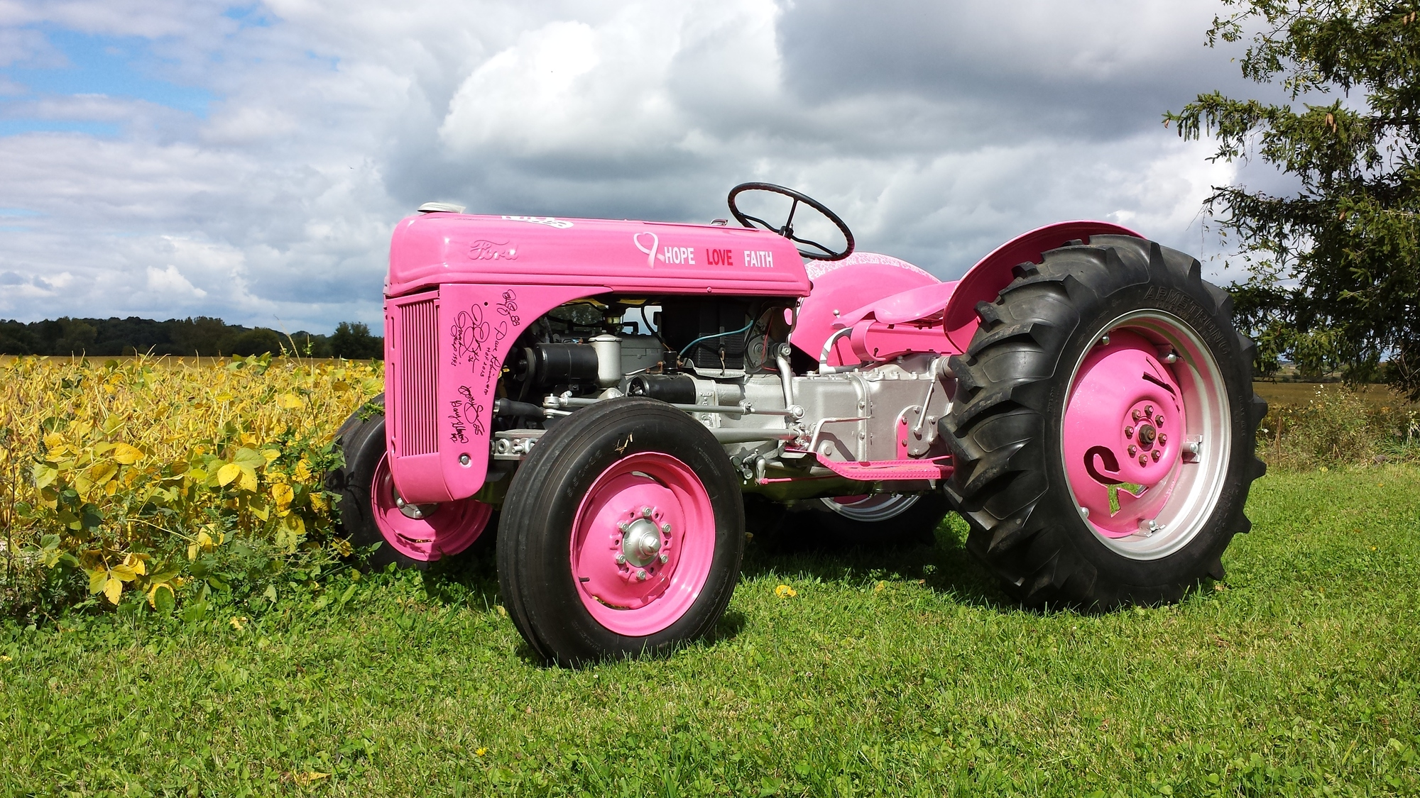 8n Ford Tractors : Ford n think pink antique tractor