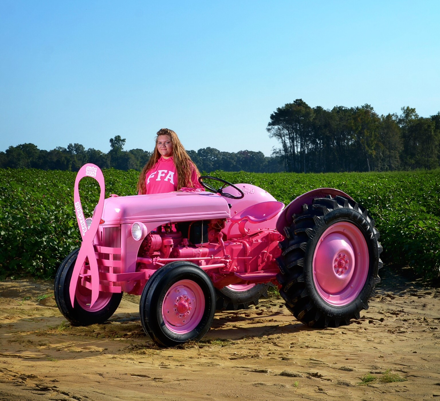 ford 8n tractor drayton room stat wiring diagram ffa a pink and an amazing girl  antique blog