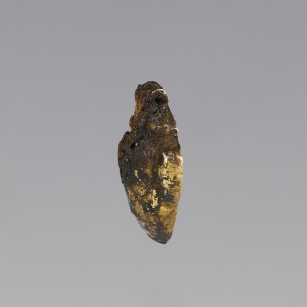 Gold Egyptian Heart Amulet