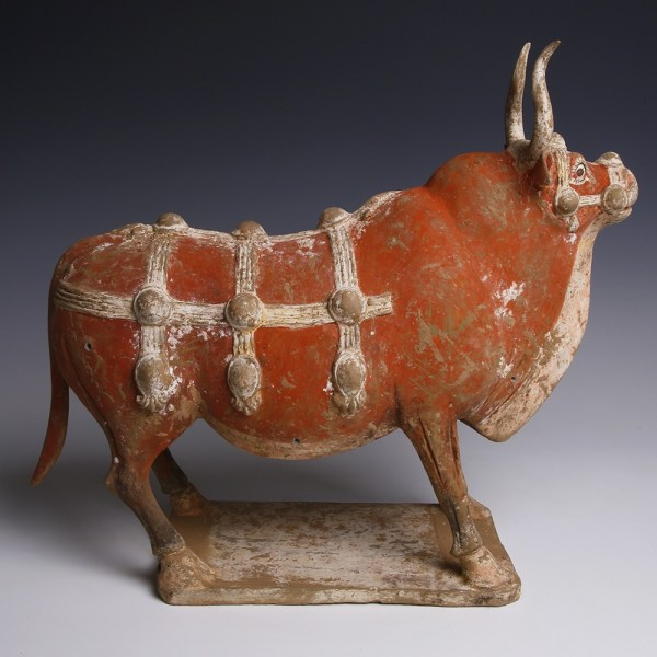 Tang Dynasty Ox Statuette