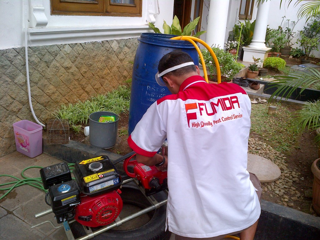 jasa-anti-rayap-di-Bali-1024x768.jpg