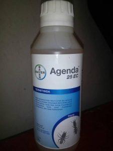 harga agenda 25 ec