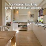 Tips Mencegah Hama Rayap Agar Tidak Memakan Alat Perabotan