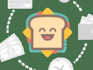 finished boats