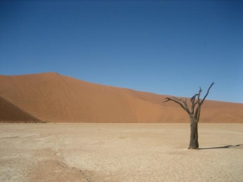 Heather (@TravelingSaurus) of the USA caught a lonely shot of Namibia: http://t.co/hHTnK7gHwI