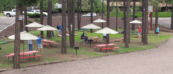 All of our hotel guests are invited to enjoy our large courtyard area at the best Pinetop Motel, Antlers Inn.
