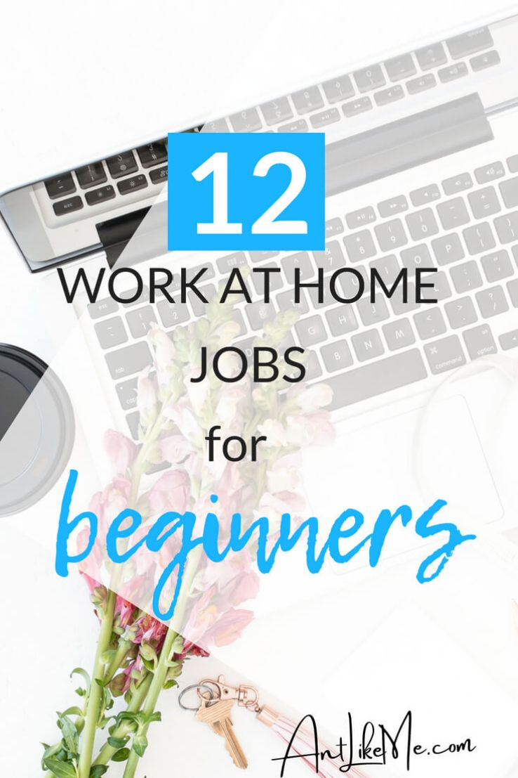 12 Work at Home Jobs, No Experience Necessary - Ant Like Me