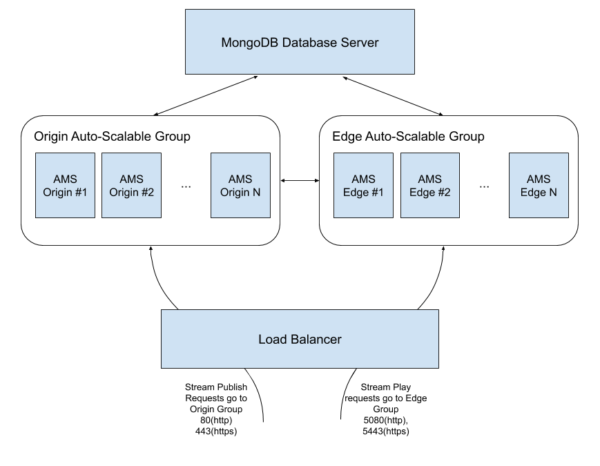 ams cluster schema