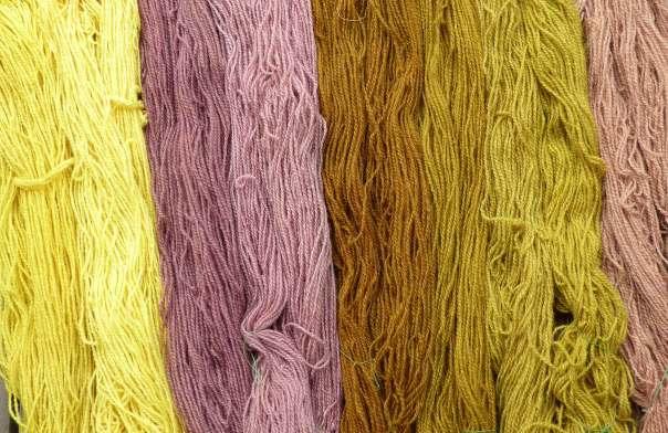 Växtfärgade ullgarner färgade med från vänster renfana, fläderbär, lökskal och mix