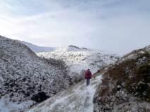 Fairbrook Winter