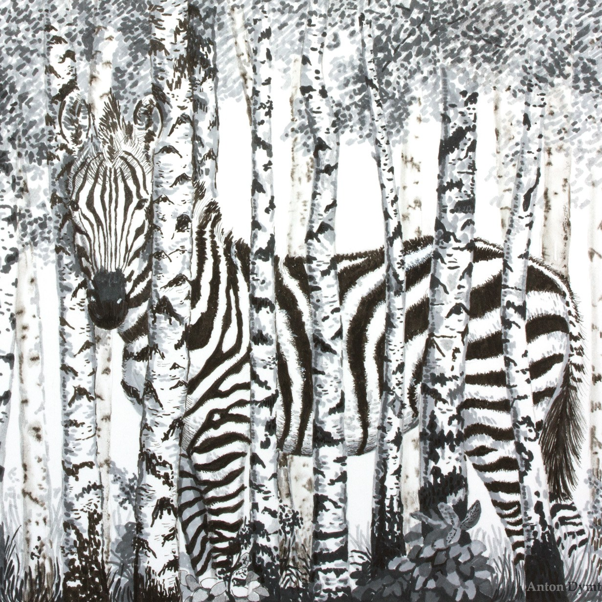 Birch Forest Zebra