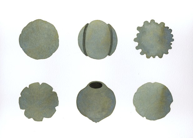 unknown objects 5