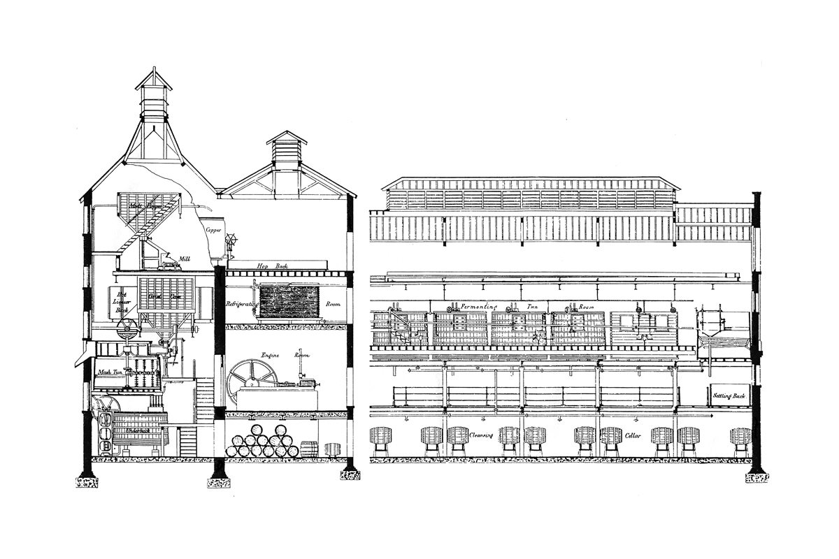 Historic Section Drawing Of The Albion Brewery