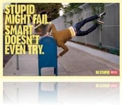 Os estupidos podem falhar, os espertos nem tentam!
