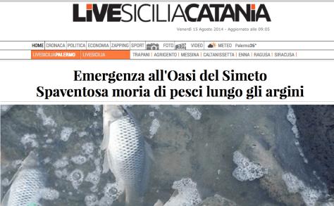 Oasi simeto pesci morti