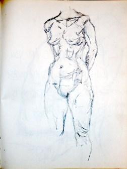 Notebook 1981 #5