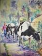 Vacas, 30x40 60 €