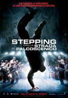"""""""Stepping - Dalla strada alpalcoscenico"""""""