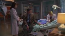 Dr. House - Medical Division, episodio3×19