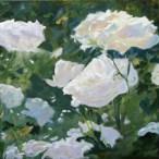Rosas Blancas II 50x 50