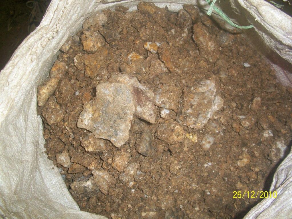 Batu yang mengandung emas (urat)