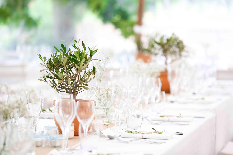 Déco mariage olivier