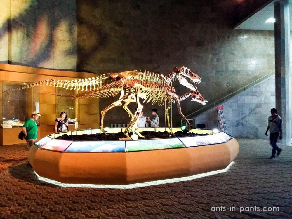 dinosaurs museum in Ulan Bator