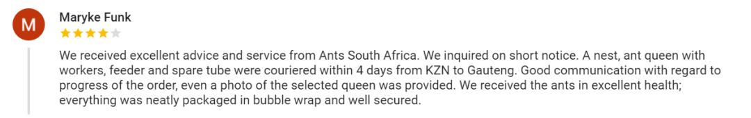 Customer Reviews - Ants South Africa (10)