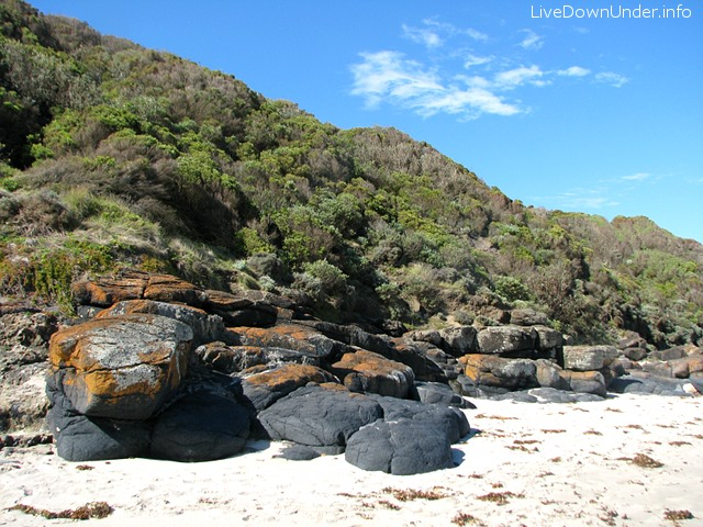 Bushrangers Bay beach