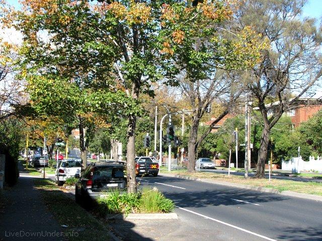 Jesień w Australii, Middle Park, Melbourne