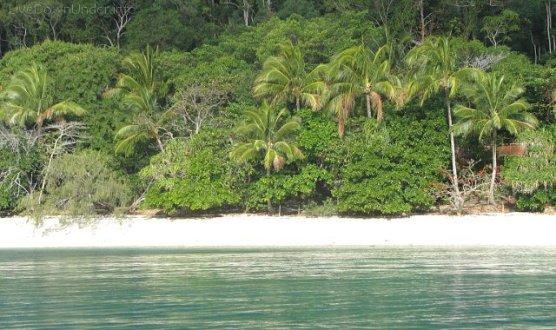 plaża na Fitzroy Island, Cairns, Australia